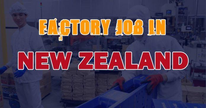 FACTORY JOB IN NEW ZEALAND