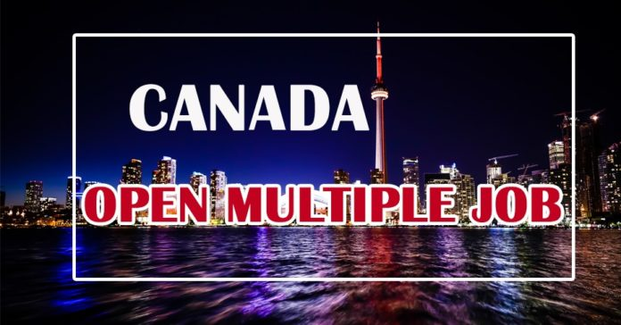 General Multiple Job in Canada